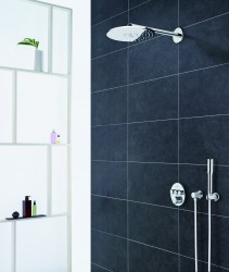 3 GROHE Rainshower 310 2-Jet_round_chrome.jpg