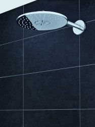 6 GROHE Rainshower 310 2-Jet.jpg